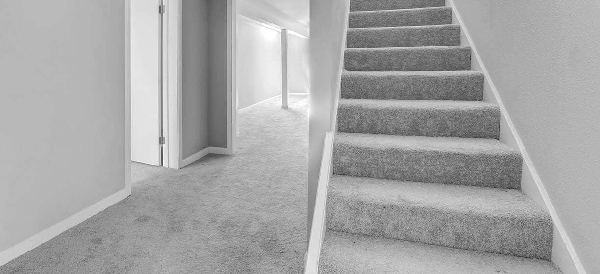 Bothell Carpet Cleaning Services, Carpet Cleaning Company and Green Carpet Cleaning Services