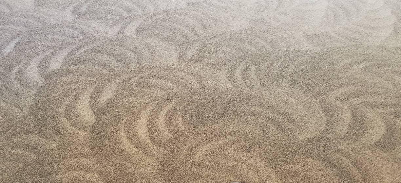 Kirkland Carpet Cleaning Services, Carpet Cleaning Company and Green Carpet Cleaning Services